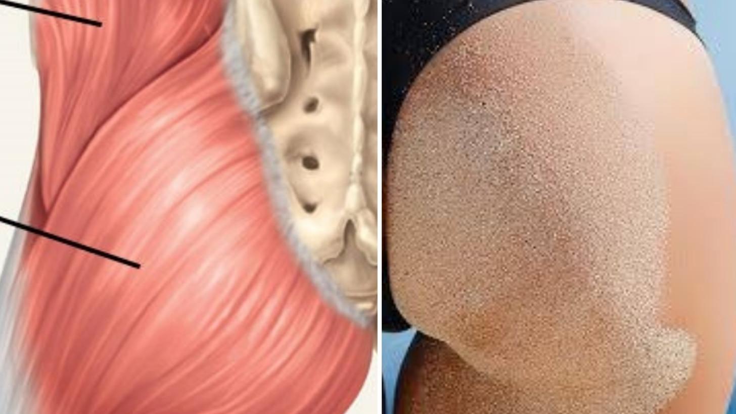 Esercizi schiena bassa per rinforzare e sciogliere i muscoli